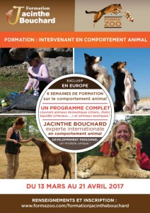 Formation Intervenant en Comportement Animal, Jacinthe Bouchard
